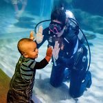 Toddler interacting with Diver